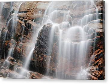 Arethusa Falls - Crawford Notch State Park New Hampshire Usa Canvas Print by Erin Paul Donovan