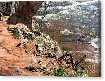 Canvas Print featuring the photograph Arizona Red Water by Debbie Hart