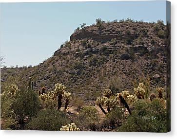 Arizona Scenic Vii Canvas Print by Suzanne Gaff