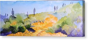 Arizona Springtime Canvas Print