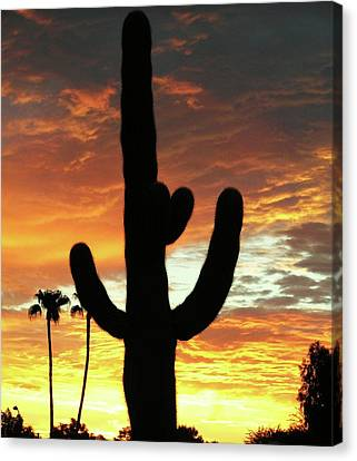 Arizona Sunrise 01 Canvas Print