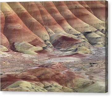 Clay Canvas Print - Art And Color In Nature by Leland D Howard