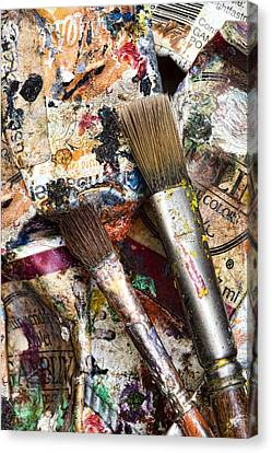 Art Is Messy 1 Canvas Print by Carol Leigh