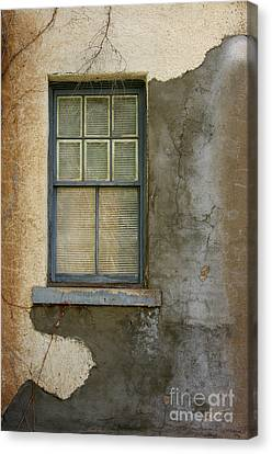 Art Of Decay Canvas Print by Vicki Pelham