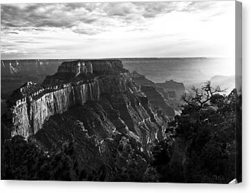 Art Of Light  Canvas Print by Greg Wyatt