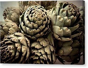 Larnaca Canvas Print - Artichokes Bouquet by Eyes' Fun