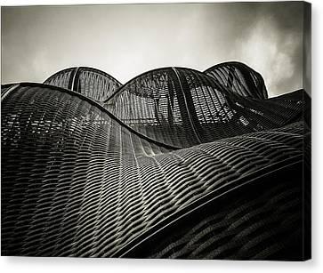 Artistic Curves Canvas Print by Lenny Carter