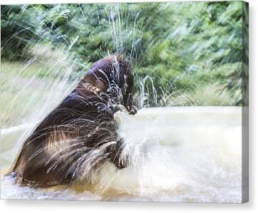 Artistic Splash Canvas Print by Jean Noren