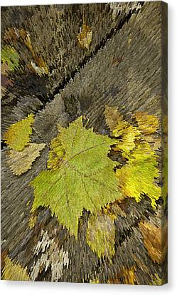 Artsy Autumn Leaves On Wood Canvas Print by M K  Miller