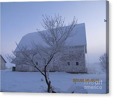Canvas Print featuring the photograph As White As Snow by Tina M Wenger