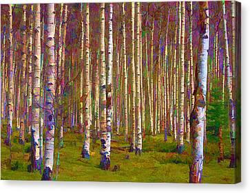 Canvas Print featuring the digital art Aspen Dawn IIi by Brian Davis