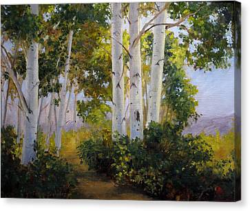 Aspen Grove Canvas Print by Victoria  Broyles