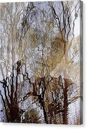 Asphalt - Portrait Of A Boy Canvas Print
