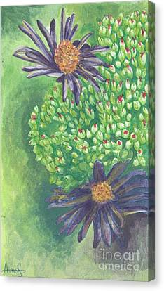 Aster Canvas Print by Acqu Art