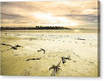 Canvas Print featuring the photograph At Caroline Bay Timaru New Zealand by Nareeta Martin
