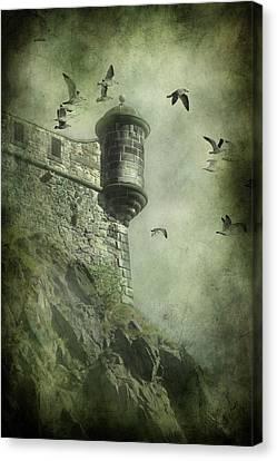 Creepy Canvas Print - At The Top by Svetlana Sewell