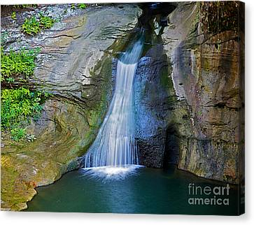 At The Well Canvas Print by Robert Pearson