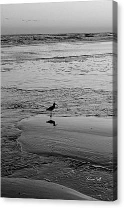 At Twilight In Black And White Canvas Print