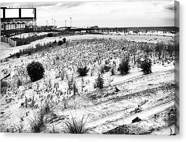 Atlantic City Dunes Canvas Print