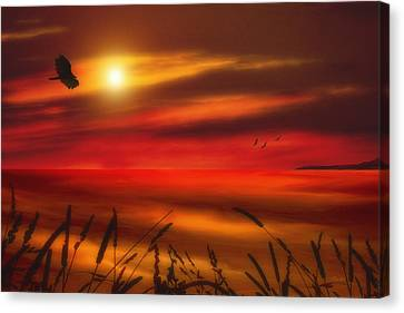 August Sunset Canvas Print by Tom York Images