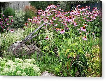 Aunt Christy's Garden Canvas Print by Jennifer Compton