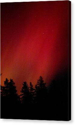 Aurora 01 Canvas Print by Brent L Ander