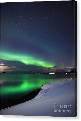Aurora Borealis Over Vagsfjorden Canvas Print by Arild Heitmann