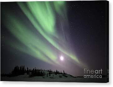 Aurora Borealis, Yellowknife, Northwest Canvas Print