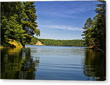 Ausable River In June Canvas Print