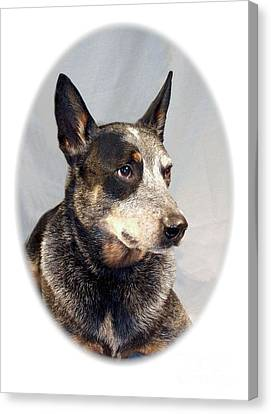 Australian Cattle Dog 1254 Canvas Print by Larry Matthews