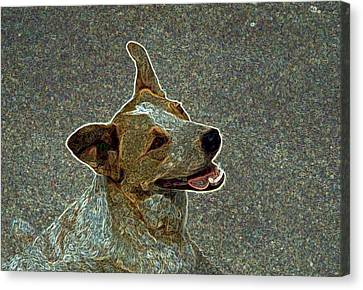 Australian Cattle Dog Mix Canvas Print by One Rude Dawg Orcutt