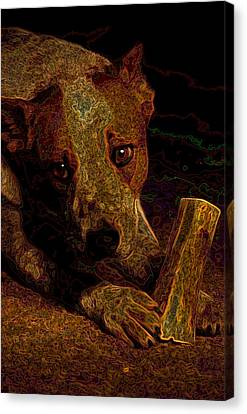 Australian Cattle Dog Canvas Print by One Rude Dawg Orcutt
