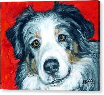 Australian Shepherd Blue Merle Aussie On Red Canvas Print by Dottie Dracos