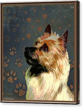 Australian Terrier Canvas Print by One Rude Dawg Orcutt