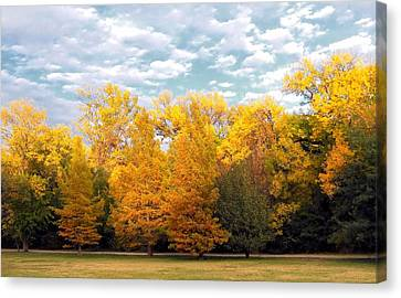 Autum In Texas Canvas Print by Lynnette Johns