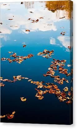 Autumn - 3 Canvas Print by Okan YILMAZ