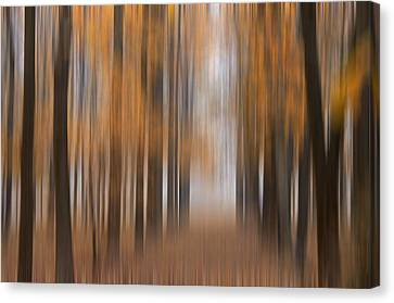 Autumn Abstract Canvas Print by Darlene Bushue