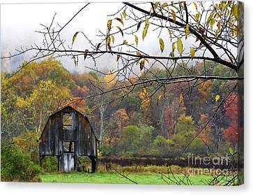 Autumn Along Tioga Road Canvas Print by Thomas R Fletcher