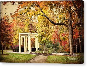Autumn Arbor Canvas Print by Cheryl Davis