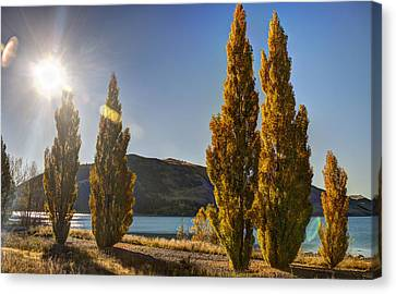 Aotearoa Canvas Print - Autumn At Lake Tekapo by Andreas Hartmann