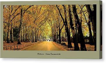 Autumn Avenue Canvas Print by Liona Toussaint