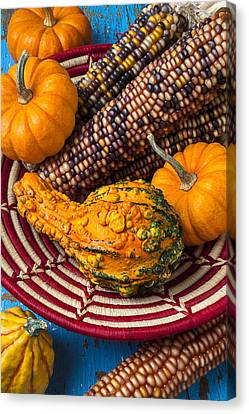 Autumn Basket  Canvas Print by Garry Gay