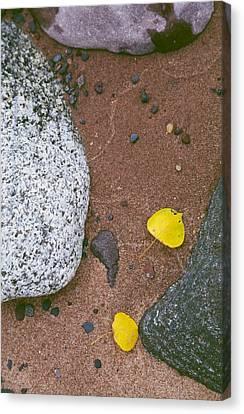 Autumn Beach Canvas Print