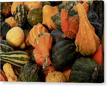 Canvas Print featuring the photograph Autumn Bounty by Patrice Zinck