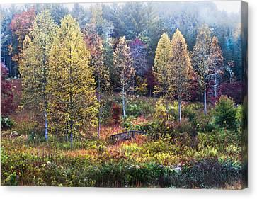 Smokey Mountains Canvas Print - Autumn Bridge In The Fog by Debra and Dave Vanderlaan
