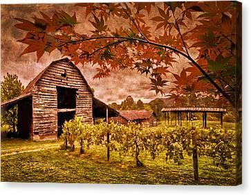 Autumn Cabernet Canvas Print