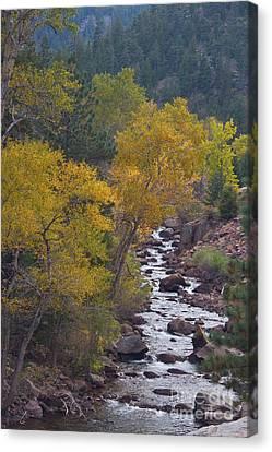 Autumn Canyon Colorado Scenic View Canvas Print by James BO  Insogna