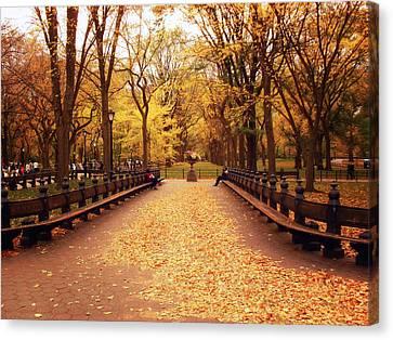 Autumn - Central Park - New York City Canvas Print by Vivienne Gucwa