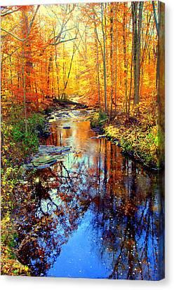 Autumn Colors 11 Canvas Print