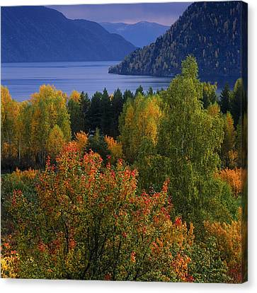 Autumn Colors Canvas Print by Pavel  Filatov
